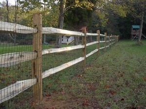 Three split rail fence